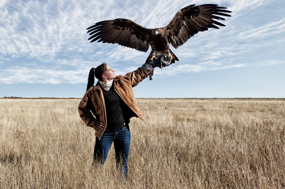 Falconry and Wildlife Rehabilitation