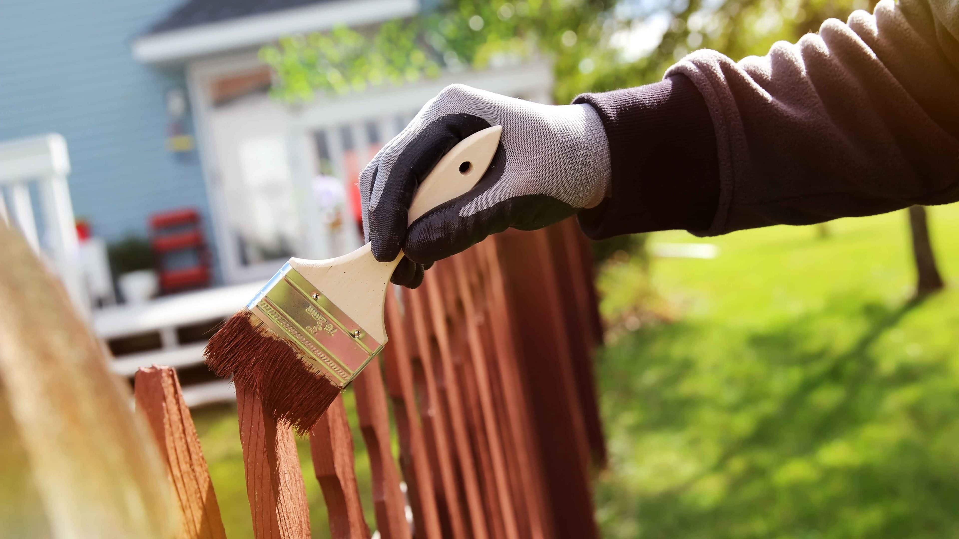 Adding a fresh coat of paint to fences is an easy project to transform your backyard.
