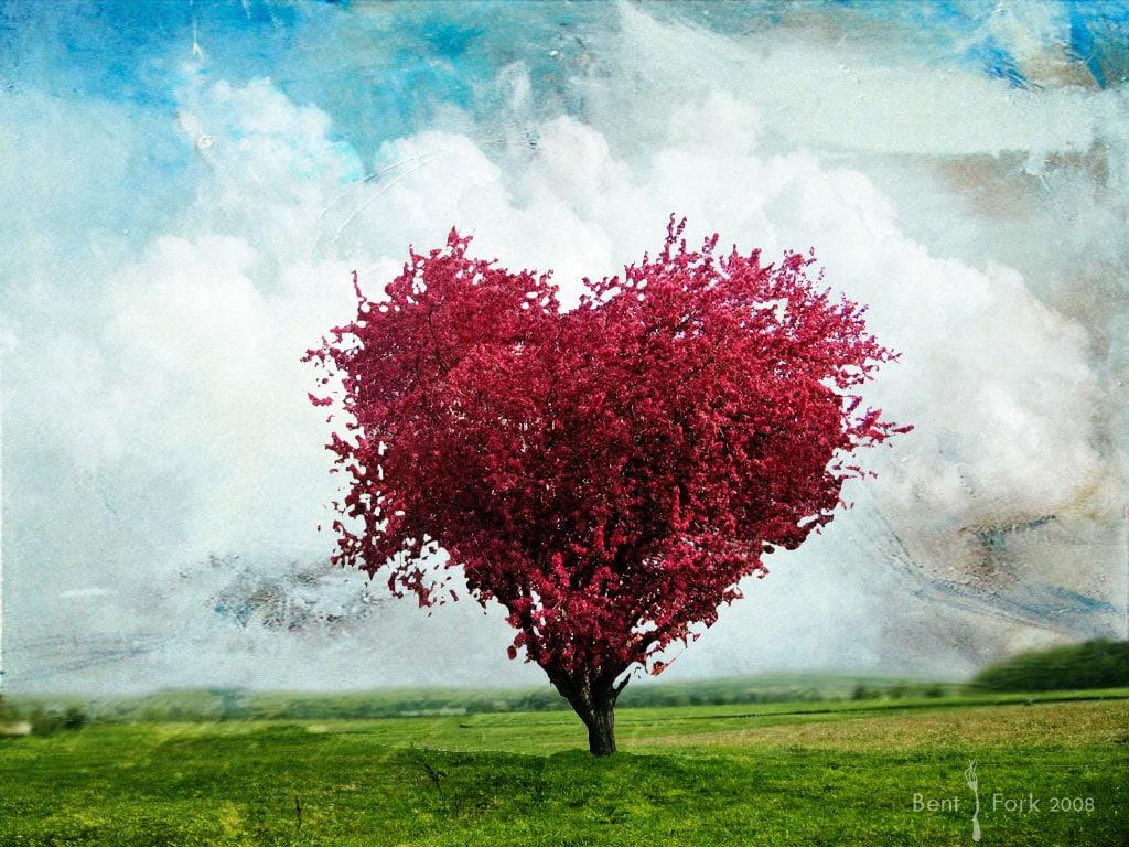 Amore e rivoluzione