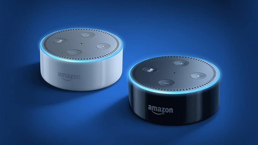 Awesome Comes in Small Packages: Amazon Echo