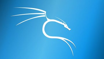 Basic Kali Linux Setup