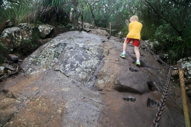Mount Warning (Wollumbin)