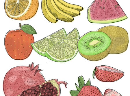 Detailed Hand Drawn and Digital Fruit Drawings