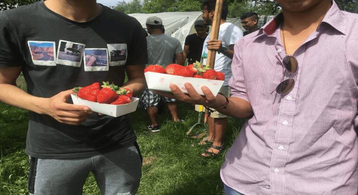 SB Espoir visits an urban farm