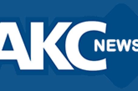 Ashoknagar News-राजघाट नहर में गिरी बालिका, मौत