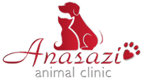 Anasazi Animal Clinic