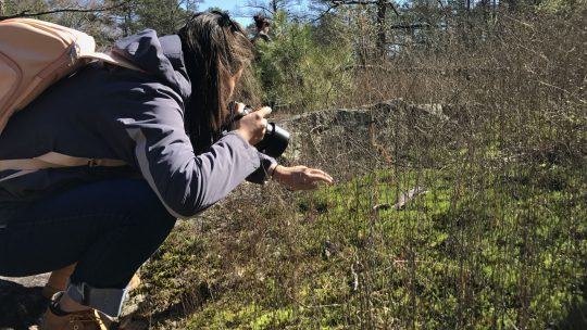 Photography Permits in the Arabia Mountain National Heritage Area