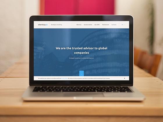 strony-www-portfolio-wierniccy