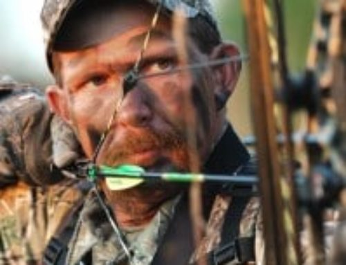 Stalk A Rut Buck With Your Bow