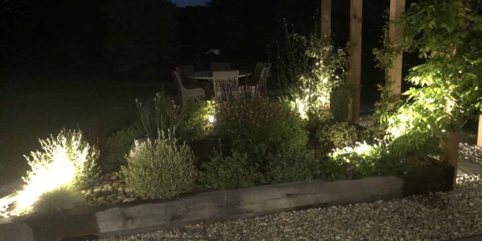 Flower bed at night