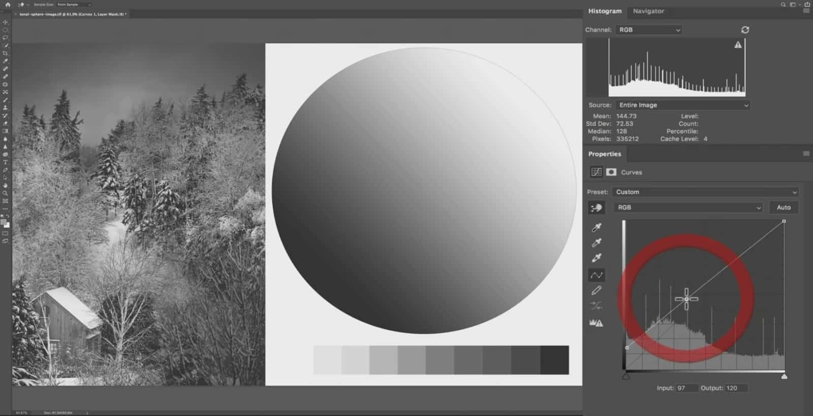 Adjusting the Tonal Environment with Contrast - CreativeRAW