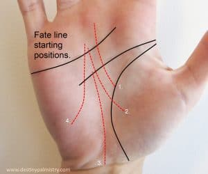 fate lines in palmistry, palm reader in brisbane