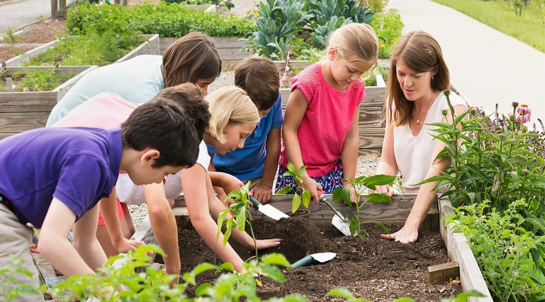 kids working together in garden