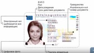 Получение ID паспорта