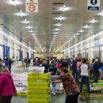 La compra on line entre mayores, autocuidados y  nutrientes, novedades de la compra del confinamiento