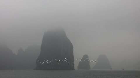 Cruising Through A Mysterious Misty Halong Bay, Vietnam