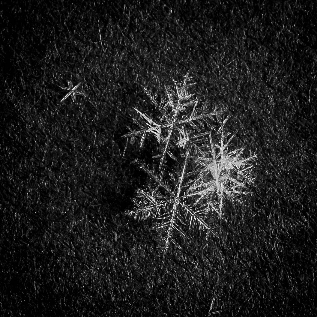 Eiszauber | Mark Poltermann | 2021