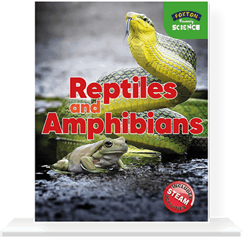 Cover-with-shelf-REPTILES