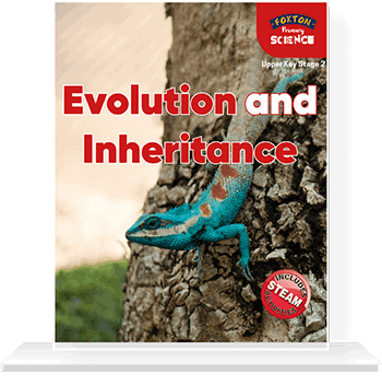 Evolution and Inheritance