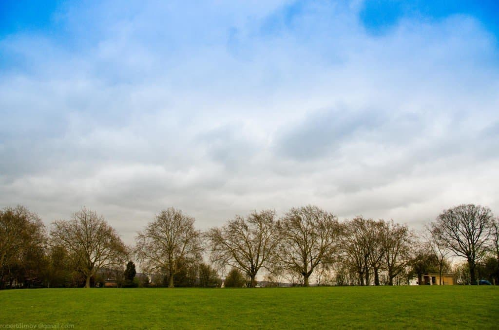 Hilly Fields London