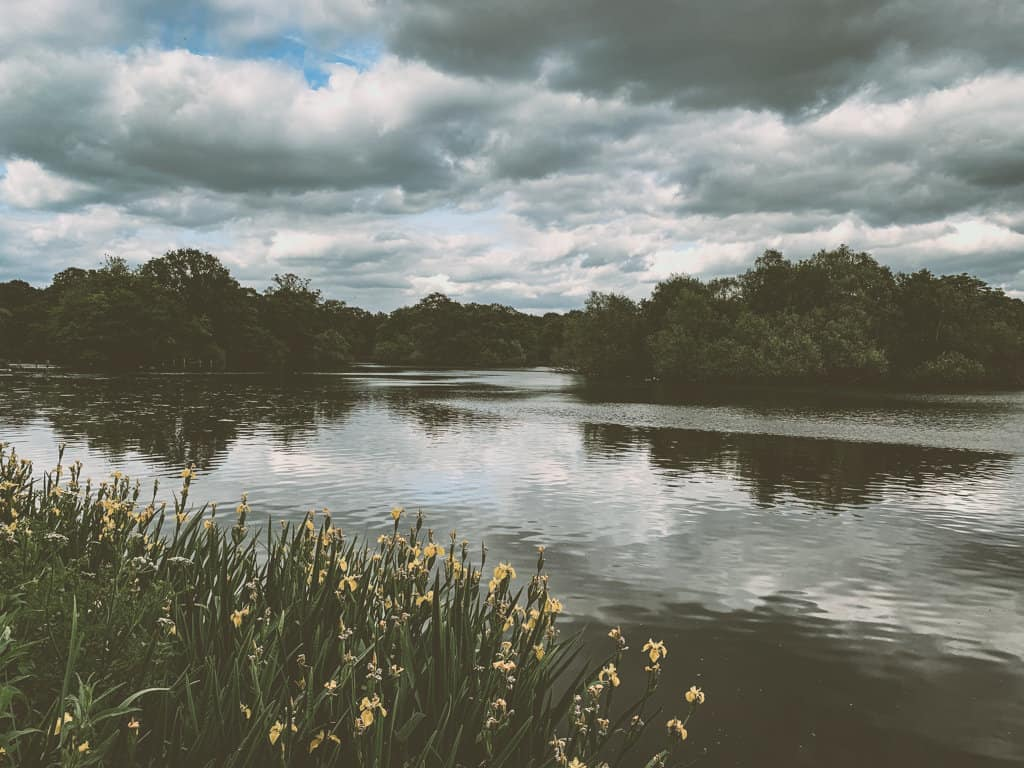Fishing in Epping Forest