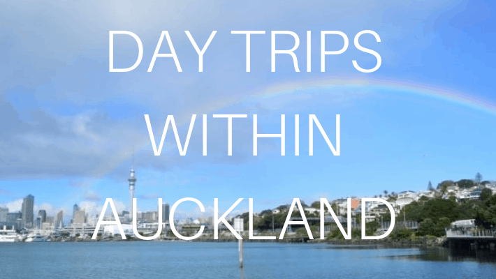 auckland-in-new-zealand