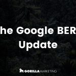 The Google BERT Update