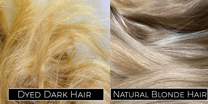 Not heavily dyed black or brown hair, it starts out as blonde.