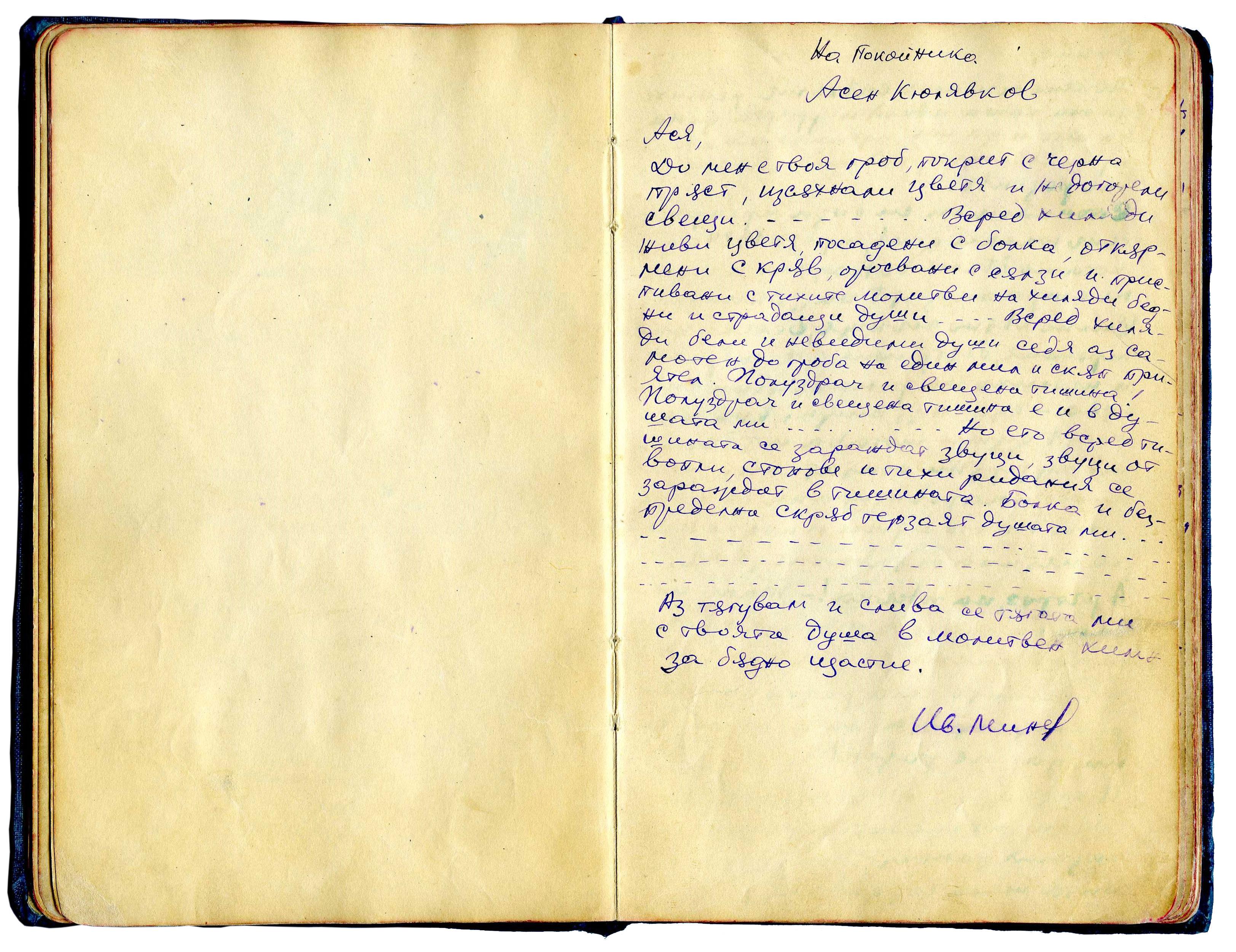 IvanMinevVulcahnov14.jpg