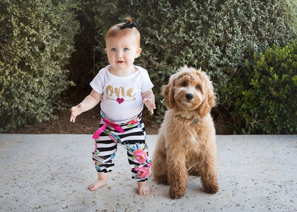one year old and her dog