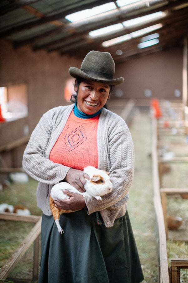 peruvian woman holds her guinea pig photo