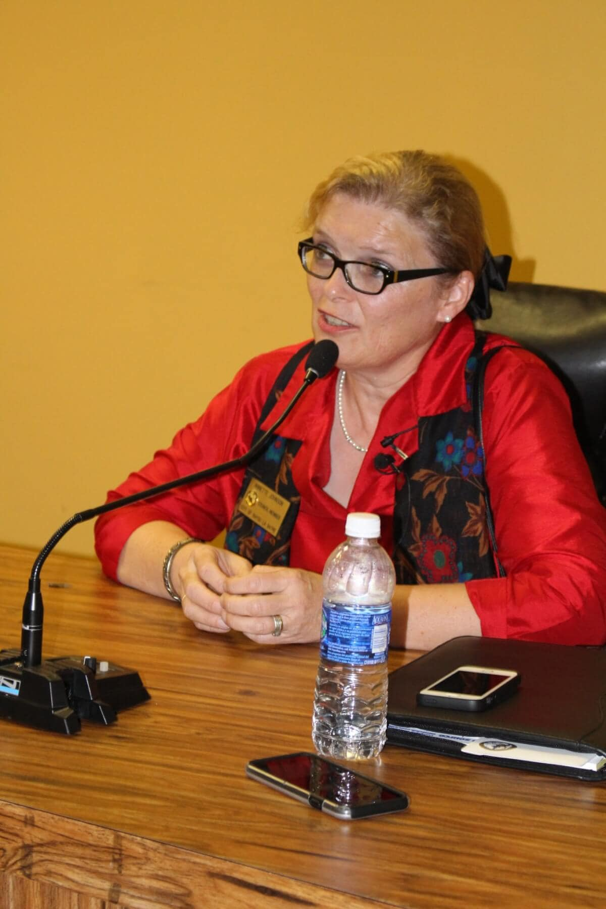 Johnson appointed as Bayou mayor, discusses finances