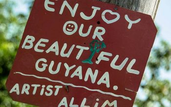 Travel Information on Guyana – Border Crossing, Money Matters, Roads & Road Maps, and More
