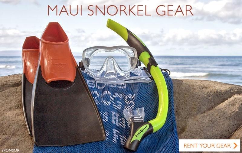 snorkel set