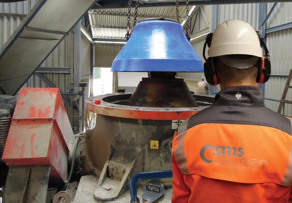 Подальший розвиток бізнесу CMS Cepcor