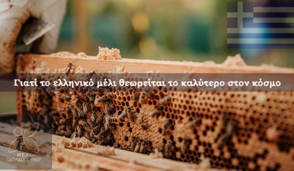 το-ελληνικό-μέλι-θεωρείται-το-καλύτερο-στον-κόσμο
