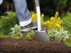 Дача, сад, огород — как обойтись без химии