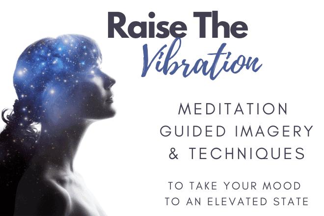 Raise the Vibration poster