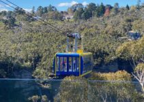 Up High & Down Low: Experience Scenic World in the Blue Mountains With Your Family