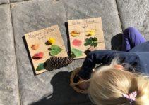Three Nature Craft Activities to Do With Kids