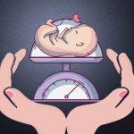 Cân Nặng Chuẩn 2019 Của Thai Nhi Trong Bụng Mẹ