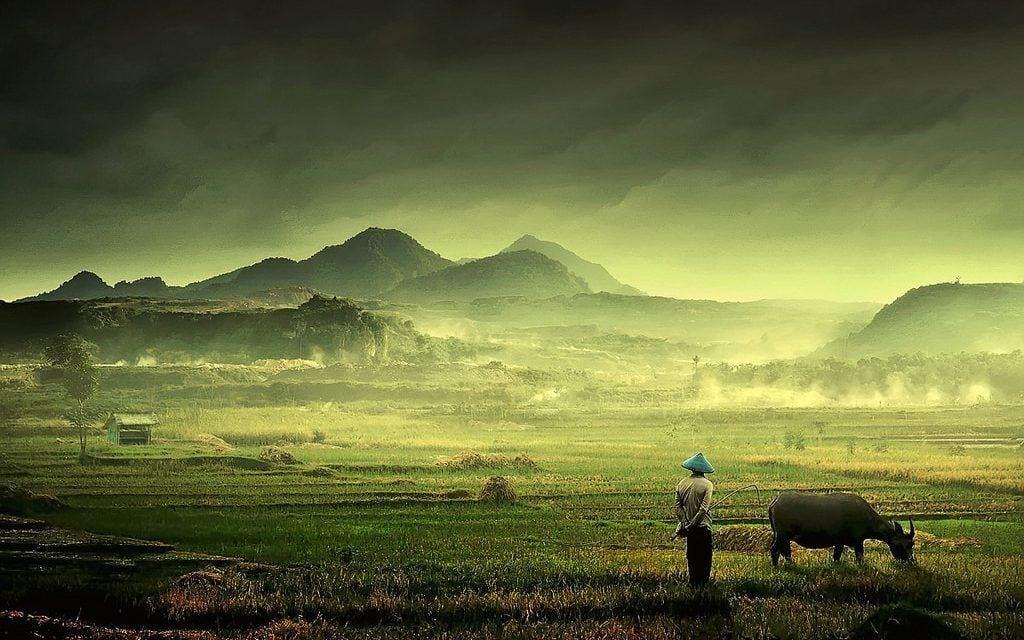 INDONESIA EN 12 EXPERIENCIAS