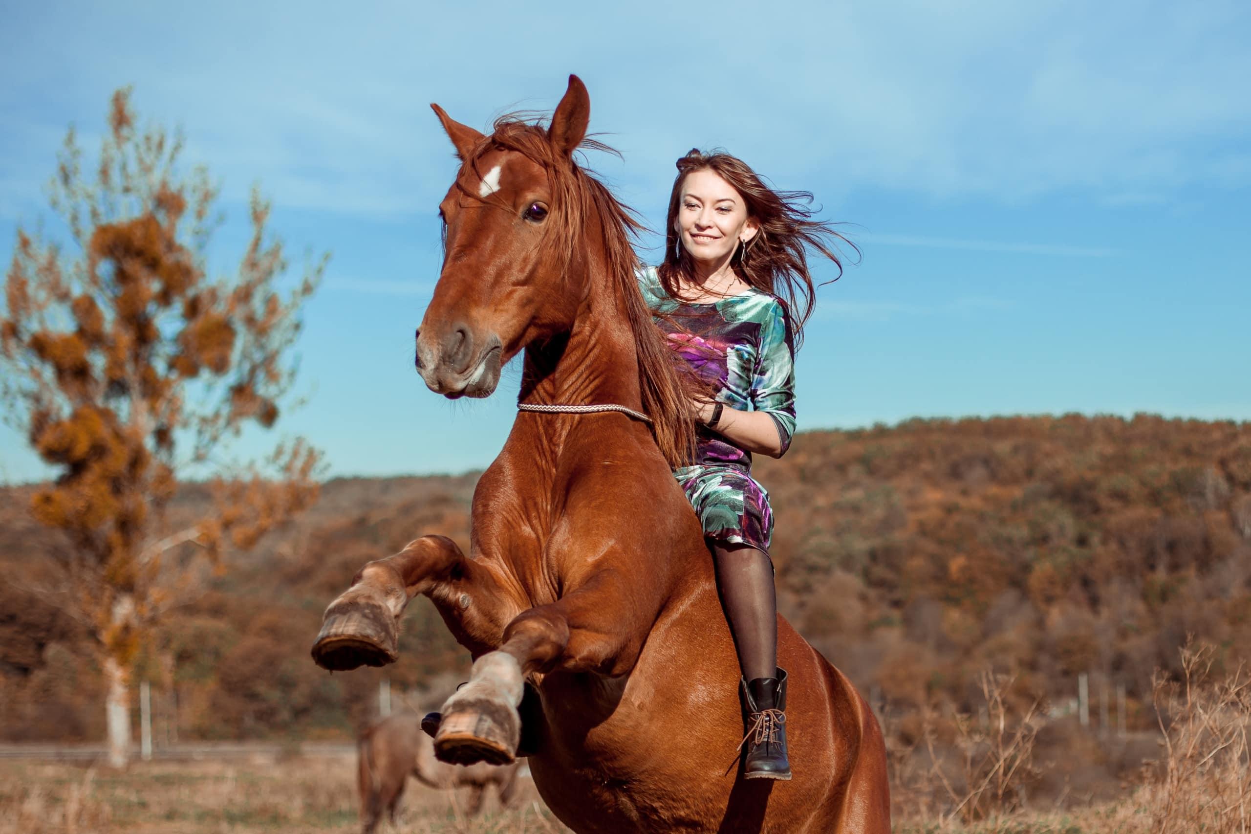 Фотосессия с трюков конем