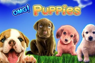 Omg puppies slot