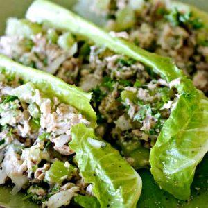 Skinny Zesty Salmon Salad