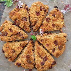 Gluten-Free Cranberry Oat Scones