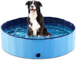 4. Jasonwell Foldable Dog Pet Bath Pool Collapsible Dog Pet Pool Bathing Tub Kiddie Pool for Dogs Cats and Kids