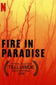 Fire in Paradise 2019