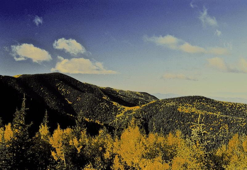 Gila National Forest, Gila Wilderness Area, c/o Dave Foreman