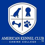 AKC Canine College